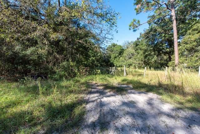 18625 Deason Drive, Spring Hill, FL 34610 (MLS #T3336366) :: Expert Advisors Group