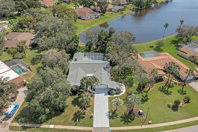 4540 Lake In The Woods Drive, Weeki Wachee, FL 34607 (MLS #T3336368) :: Keller Williams Suncoast