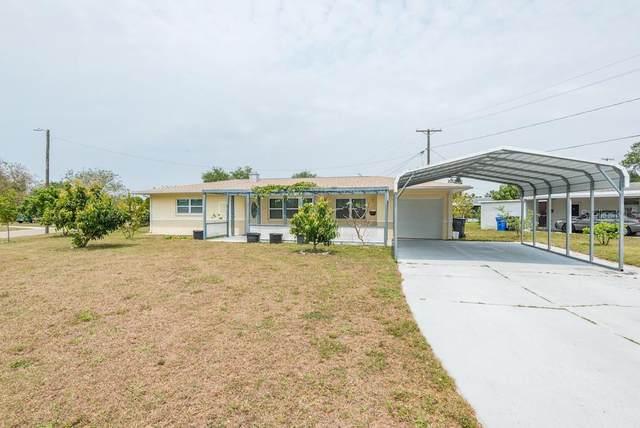 301 Francis Drive, Apollo Beach, FL 33572 (MLS #T3336380) :: Frankenstein Home Team