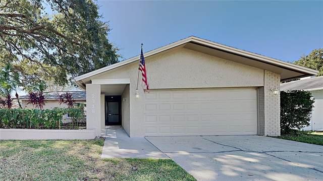 2318 Hazelwood Lane, Clearwater, FL 33763 (MLS #T3336389) :: The Truluck TEAM
