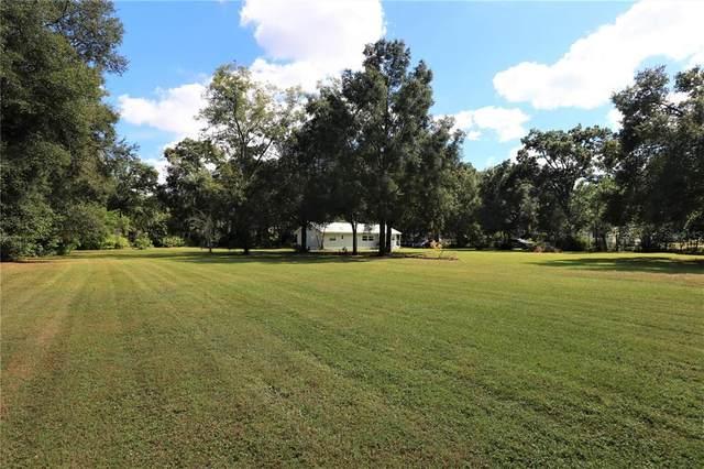 3106 Deb Silas Way, Plant City, FL 33565 (MLS #T3336394) :: Blue Chip International Realty