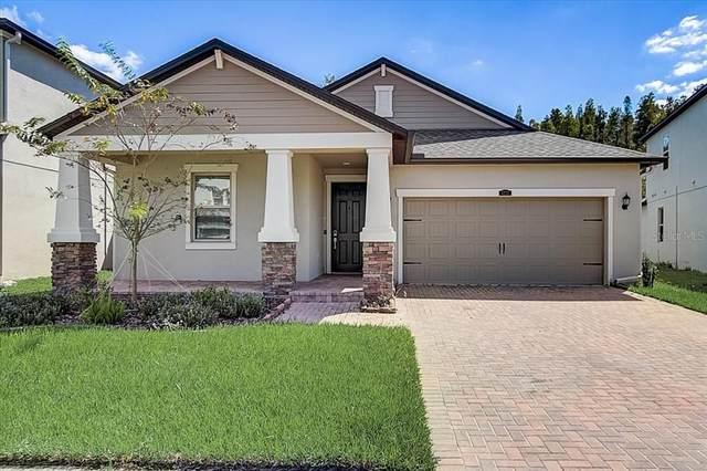 6233 English Hollow Road, Tampa, FL 33647 (MLS #T3336398) :: Visionary Properties Inc