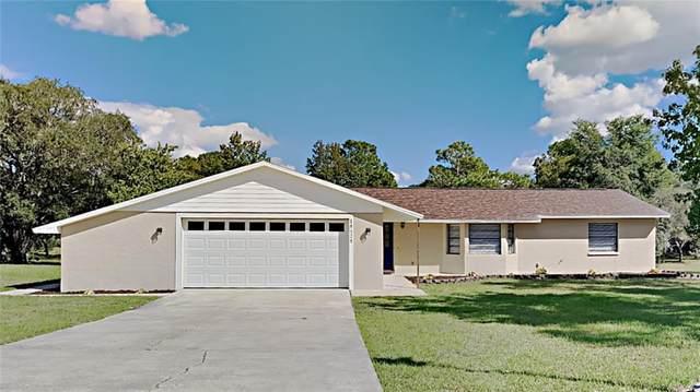 18628 Wellborn Lane, Spring Hill, FL 34610 (MLS #T3336404) :: Premium Properties Real Estate Services