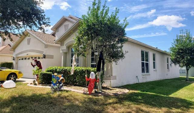 4529 Havelocke Drive, Land O Lakes, FL 34638 (MLS #T3336416) :: The Truluck TEAM