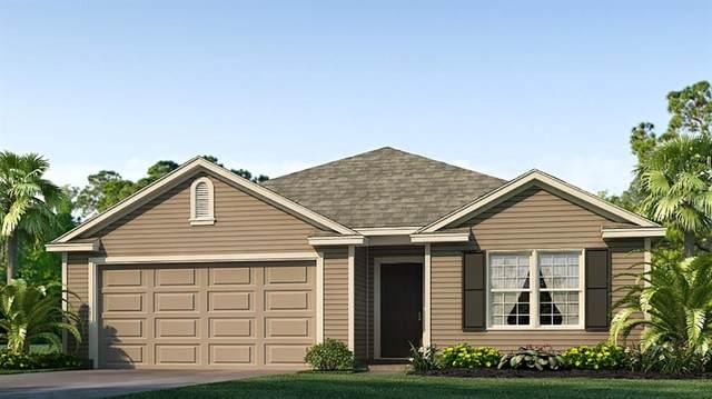 24652 NW 6TH Road, Newberry, FL 32669 (MLS #T3336417) :: Pristine Properties
