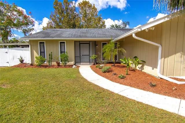 5060 Starling Drive, Mulberry, FL 33860 (MLS #T3336430) :: Stellar Home Sales