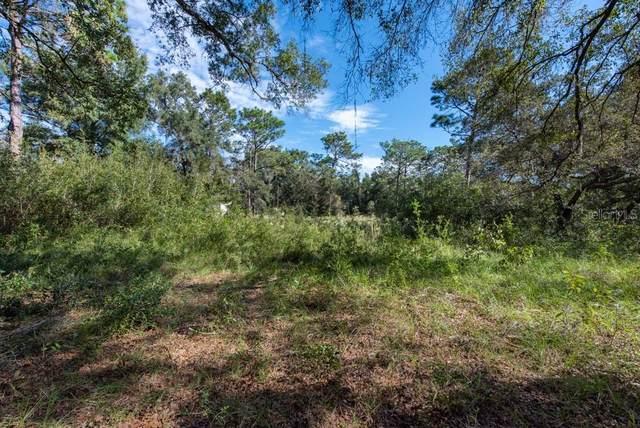 Deason Drive, Spring Hill, FL 34610 (MLS #T3336447) :: Expert Advisors Group