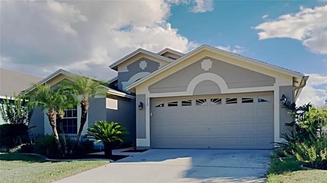 215 Fern Gulley Drive, Seffner, FL 33584 (MLS #T3336448) :: Medway Realty