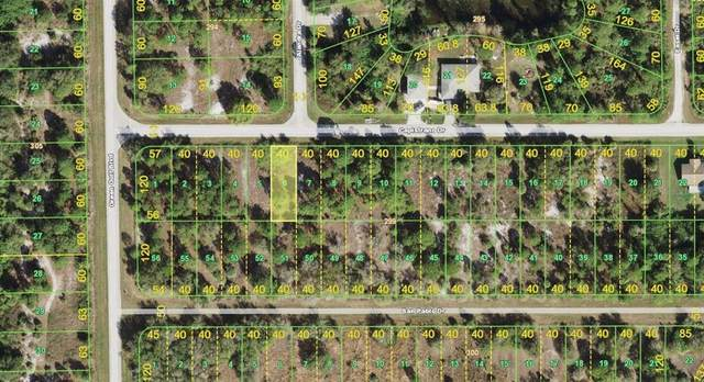 27047 Capistrano Drive, Punta Gorda, FL 33955 (MLS #T3336462) :: Keller Williams Realty Peace River Partners