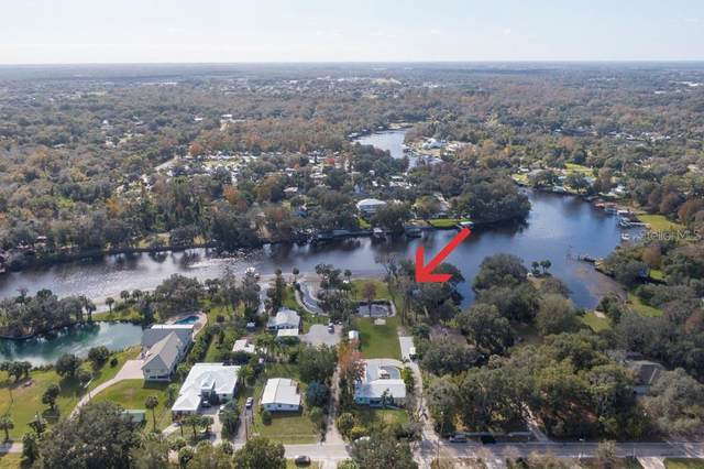 11213 Riverview Drive, Riverview, FL 33578 (MLS #T3336504) :: EXIT King Realty