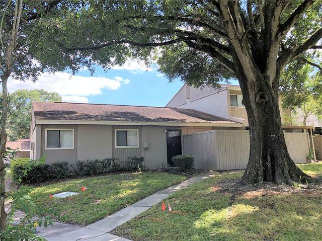 8608 Cattail Drive #8608, Temple Terrace, FL 33637 (MLS #T3336511) :: EXIT King Realty