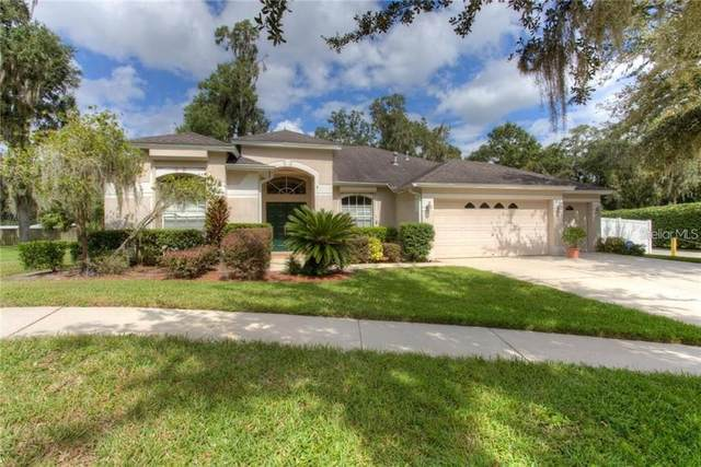 12526 River Birch Drive, Riverview, FL 33569 (MLS #T3336556) :: EXIT King Realty