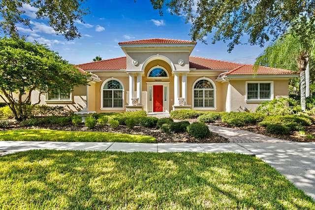 10223 Estuary Drive, Tampa, FL 33647 (MLS #T3336574) :: CARE - Calhoun & Associates Real Estate