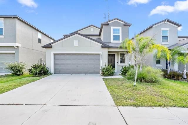10256 Carloway Hills Drive, Wimauma, FL 33598 (MLS #T3336648) :: Medway Realty