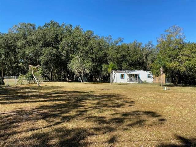 7405 Shoupe Road, Plant City, FL 33565 (MLS #T3336692) :: Charles Rutenberg Realty