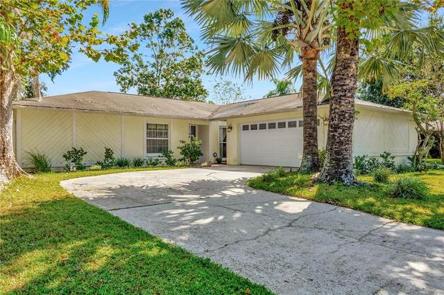 15709 Squirrel Tree Place, Tampa, FL 33624 (MLS #T3336697) :: The Nathan Bangs Group