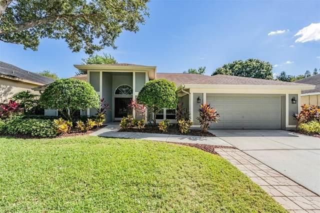 9405 Larkbunting Drive, Tampa, FL 33647 (MLS #T3336712) :: Frankenstein Home Team