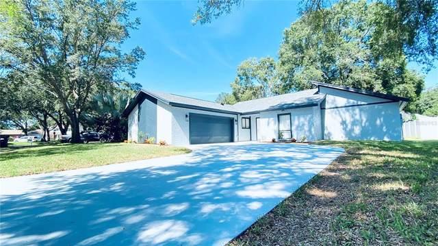 3203 Taragrove Drive, Tampa, FL 33618 (MLS #T3336759) :: Sarasota Home Specialists