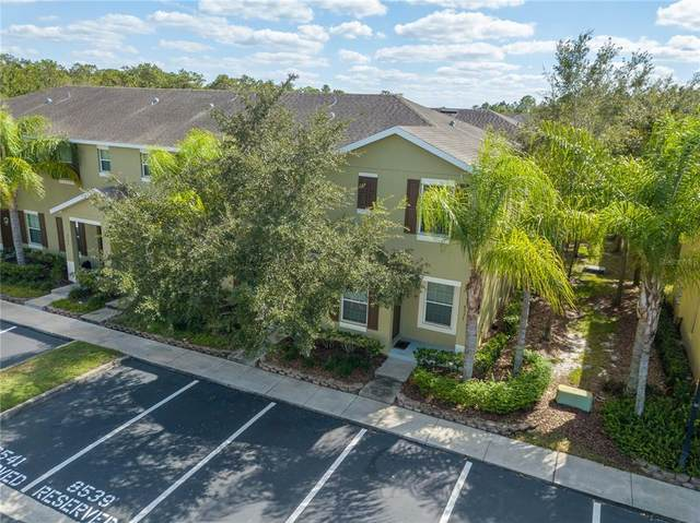 8537 Brushleaf Way, Tampa, FL 33647 (MLS #T3336784) :: The Duncan Duo Team