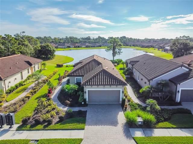 20113 Sorano Hill Place, Tampa, FL 33647 (MLS #T3336797) :: The Heidi Schrock Team