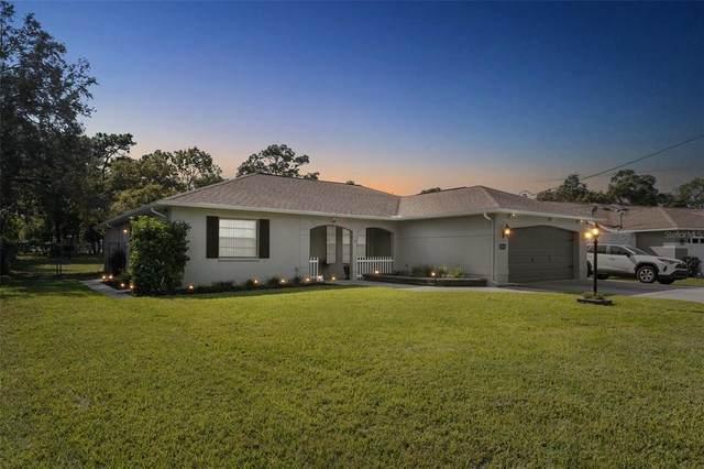 3021 Dothan Avenue, Spring Hill, FL 34609 (MLS #T3336799) :: Expert Advisors Group