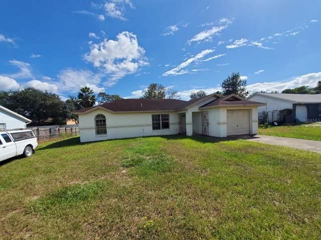 15727 SW 19TH AVENUE Road, Ocala, FL 34473 (MLS #T3336851) :: Bustamante Real Estate
