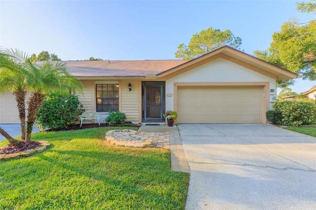 4008 Shoreside Circle, Tampa, FL 33624 (MLS #T3336869) :: The Deal Estate Team | Bright Realty