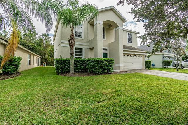 11166 Taeda Drive, Orlando, FL 32832 (MLS #T3336879) :: Vivian Gonzalez | Ocean Real Estate Group, LLC