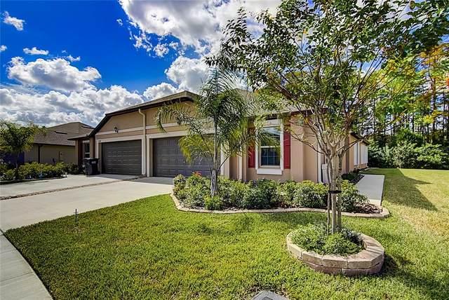 13272 Crest Lake Drive, Hudson, FL 34669 (MLS #T3336889) :: Southern Associates Realty LLC