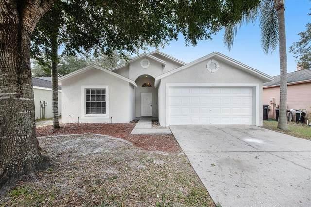13525 Bellingham Drive, Tampa, FL 33625 (MLS #T3336904) :: Frankenstein Home Team
