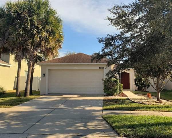 8324 Deerland Bluff Lane, Riverview, FL 33578 (MLS #T3336906) :: Frankenstein Home Team