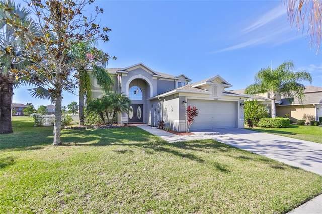 11003 Hoffner Edge Drive, Riverview, FL 33579 (MLS #T3336921) :: Frankenstein Home Team