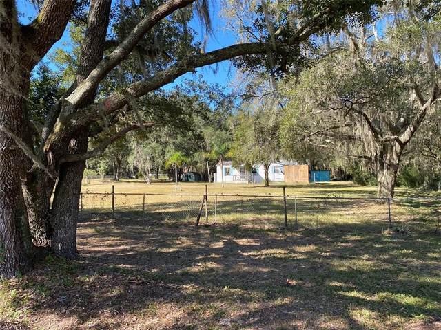 7405 Shoupe Road, Plant City, FL 33565 (MLS #T3336942) :: Charles Rutenberg Realty