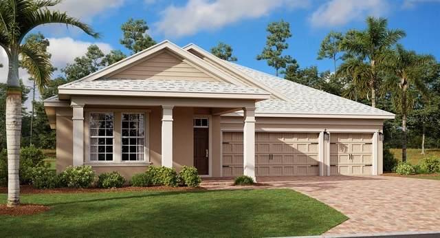 5020 Center Court, Saint Cloud, FL 34772 (MLS #T3336945) :: Everlane Realty