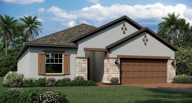 6340 Chirpine Lane, Saint Cloud, FL 34771 (MLS #T3336954) :: Everlane Realty