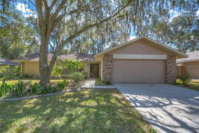 1105 Riflecrest Avenue, Valrico, FL 33594 (MLS #T3337009) :: The Brenda Wade Team