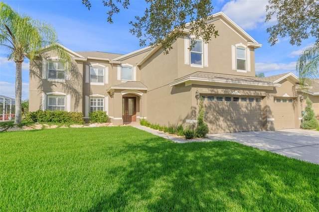 10552 Plantation Bay Drive, Tampa, FL 33647 (MLS #T3337012) :: Cartwright Realty