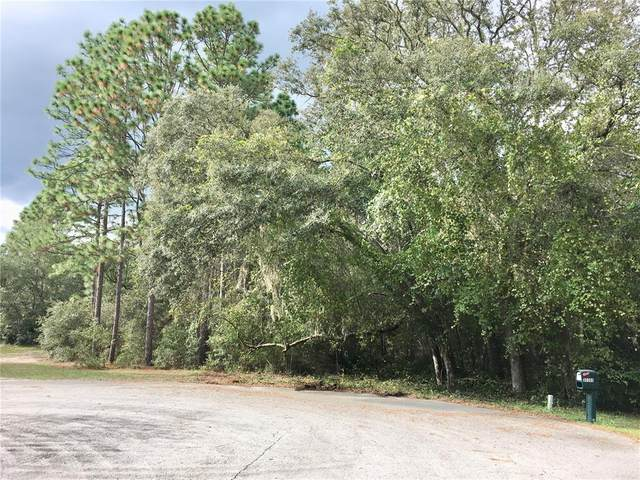 00 SW 98 Place, Dunnellon, FL 34431 (MLS #T3337033) :: Stiver Firth International