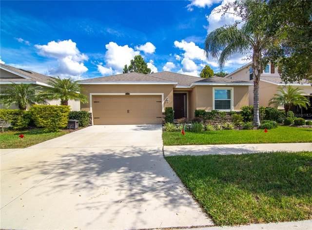 11604 Warren Oaks Place, Riverview, FL 33578 (MLS #T3337037) :: CARE - Calhoun & Associates Real Estate
