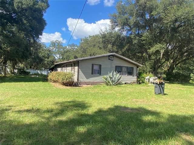 12214 Grovewood Avenue, Thonotosassa, FL 33592 (MLS #T3337057) :: Charles Rutenberg Realty