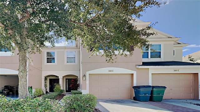 26614 Castleview Way, Wesley Chapel, FL 33544 (MLS #T3337059) :: Stellar Home Sales