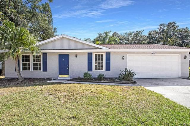 3071 Sugar Bear Trail, Palm Harbor, FL 34684 (MLS #T3337082) :: RE/MAX Marketing Specialists