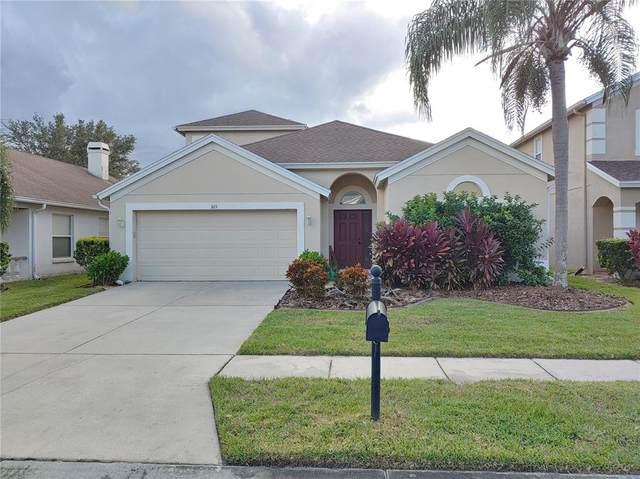 3115 Sunwatch Drive, Wesley Chapel, FL 33544 (MLS #T3337083) :: Everlane Realty
