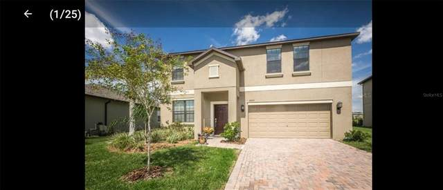12623 Mountain Springs Place, Trinity, FL 34655 (MLS #T3337089) :: RE/MAX Marketing Specialists