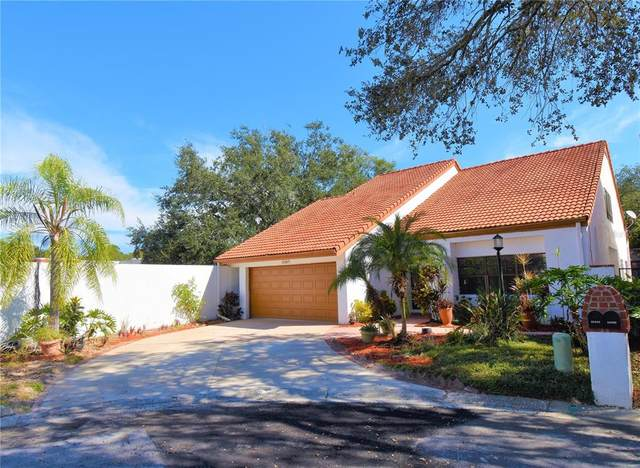 11507 Robles Del Rio Place, Temple Terrace, FL 33617 (MLS #T3337093) :: Gate Arty & the Group - Keller Williams Realty Smart