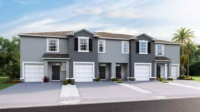 8916 Milestone Drive, Sarasota, FL 34238 (MLS #T3337125) :: Cartwright Realty