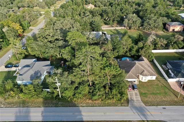 1164 Godfrey Avenue, Spring Hill, FL 34609 (MLS #T3337138) :: Keller Williams Suncoast