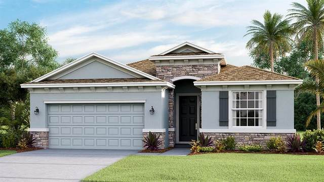3815 Turning Tides Terrace, Bradenton, FL 34208 (MLS #T3337140) :: SunCoast Home Experts