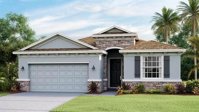 5344 Grove Mill Loop, Bradenton, FL 34211 (MLS #T3337145) :: Keller Williams Suncoast