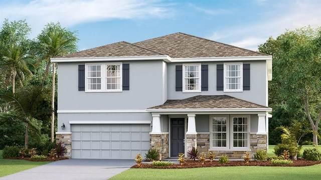 5215 Tannin Lane, Bradenton, FL 34211 (MLS #T3337151) :: Keller Williams Suncoast